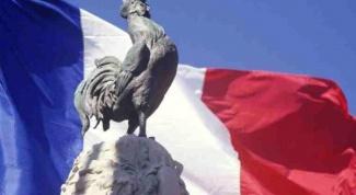 Символом какой страны является петух