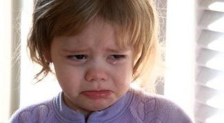 Как устроены и для чего нужны слезные железы