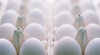 Как выбрать куриные яйца