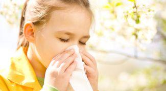 Выявление аллергенов у ребенка