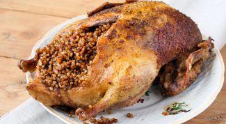 Рецепт приготовления утки с яблоками и гречкой