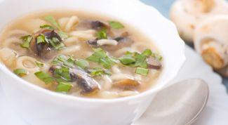 Рецепт грибного супа из белых грибов с макаронами