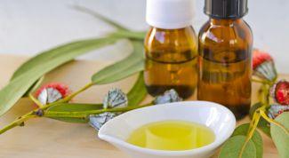 Эвкалиптовое масло: состав, лечебные свойства, применение