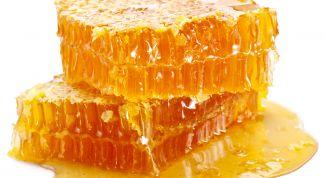 Дягилевый мед: состав и полезные свойства