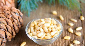 Кедровые орехи: лечебные свойства
