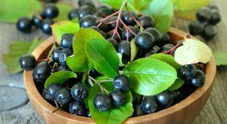Рецепты блюд из рябины черноплодной: настойка и пирог