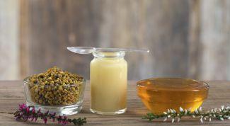 Что такое пчелиное маточное молочко? Как применять, какие эффекты можно получить?