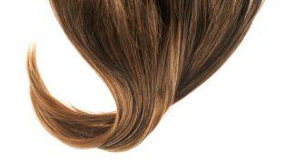 Человеческий волос: состав, структура, строение