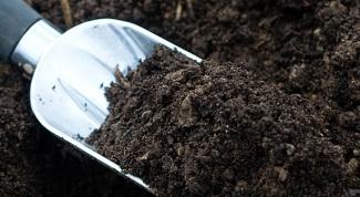 Каким должен быть грунт для выращивания овощей на балконе