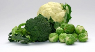 Секреты правильной заморозки овощей и зелени на зиму