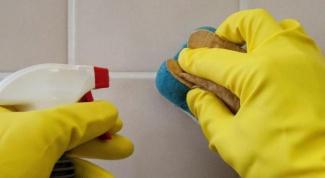 Как бороться с плесенью в ванной