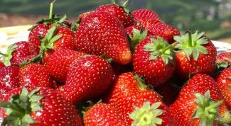 Почему мало ягод на землянике