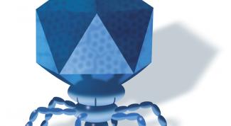 Наступит ли эра бактериофага
