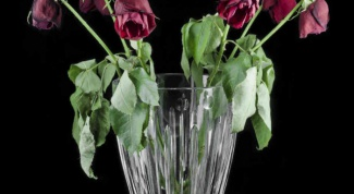 Animated bouquet of wilted roses
