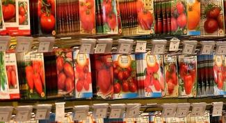 Как выбрать семена томатов в магазине