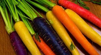 Что за овощ черная морковь