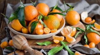 Польза и вред мандаринов - так ли полезен этот фрукт?