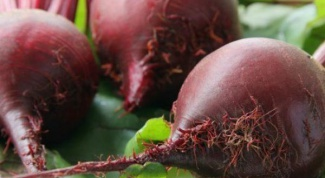 Why beet is not sweet