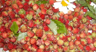 A simple recipe for liqueur wines from wild strawberries