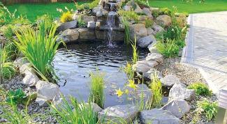 Как устроить искусственный пруд