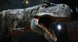 Dinosaurs in Moscow - a journey millions of years ago