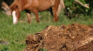 Как правильно использовать органические удобрения