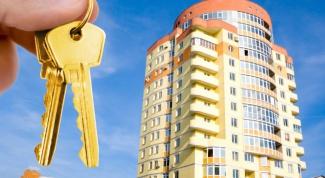 Какую квартиру лучше купить
