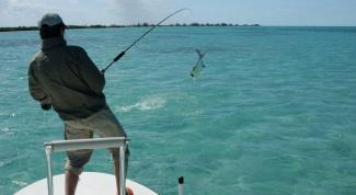 Отдых в Крыму: обзор лучших мест для рыбалки