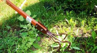 Как избавиться от сорняков на огороде или даче