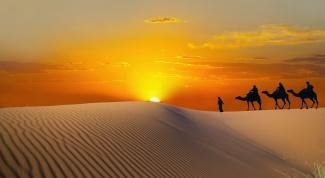 Когда лучше ехать в Тунис?