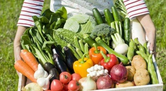 Как правильно поливать овощи на грядках