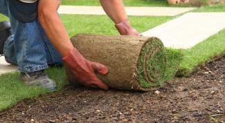 Как выложить готовый рулонный газон