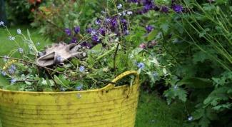 Как сделать удобрение из травы и не только