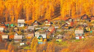 Загородная недвижимость: как выбирать дачу правильно