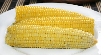 Как варить кукурузу: полезные советы