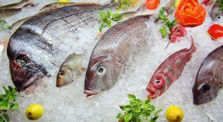 Правила хранения рыбы