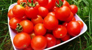 Как сохранить помидоры до Нового года
