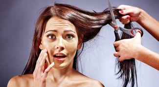 Когда лучше стричь волосы в ноябре и декабре 2016 года по лунному календарю