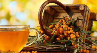 Ягоды облепихи: полезные свойства и рецепты вкусных чаев