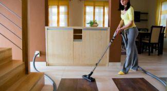 Как избавиться от блох в квартире народными средствами