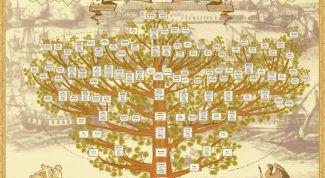 нарисовать родословное дерево