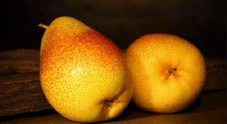 В чем польза груш для организма