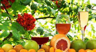Как приготовить рябиновое вино