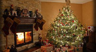 Где разместить новогоднюю елку по фэн-шуй
