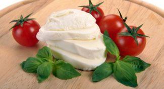 Как приготовить яичный сыр