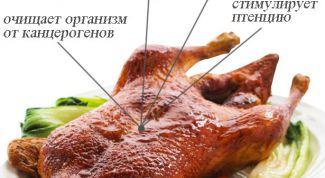 Чем полезно утиное мясо