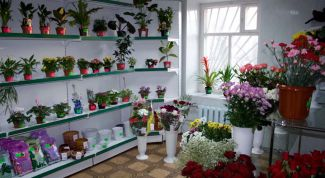 Business idea: flower shop