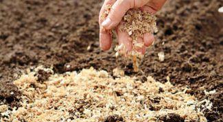 Как сделать компост с опилом