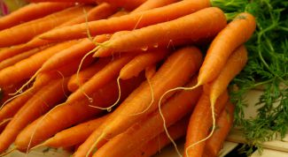 When to plant carrots in open ground