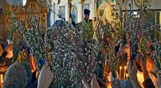 Когда освящают вербы в Церкви